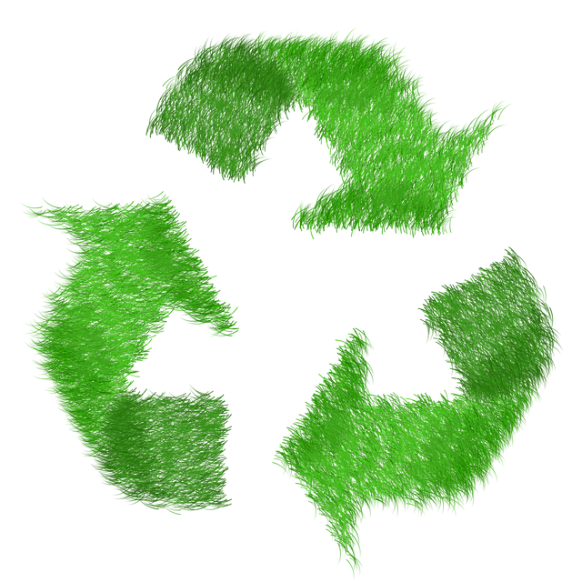 why-is-correct-waste-management-important